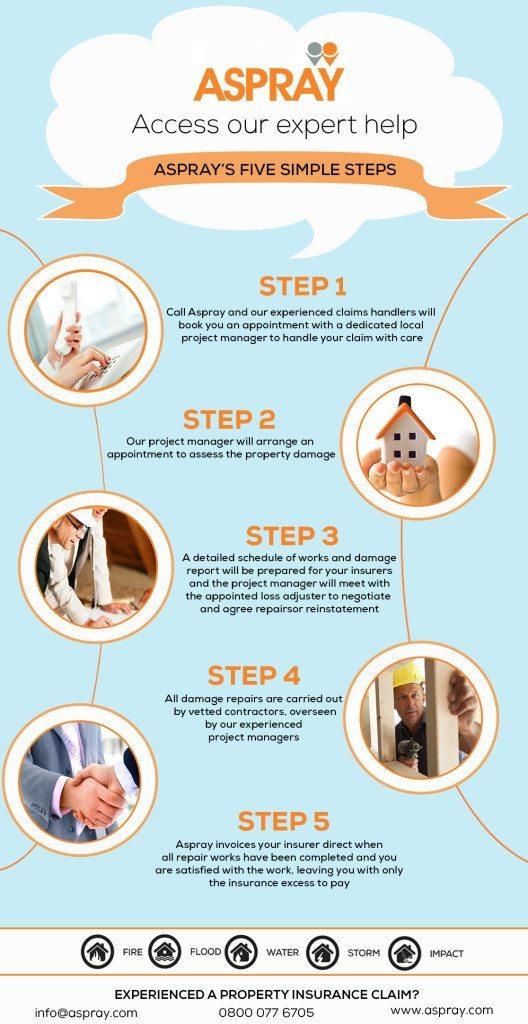 Aspray's Steps to expert help