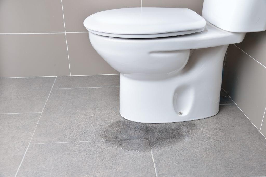 sewage flood damage to toilet.