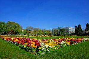 Spring Flowers Primula Vulgaris In The Imperial Gardens,Cheltenham